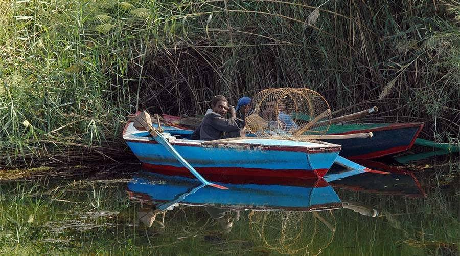Saluga and Ghazal Islands Aswan