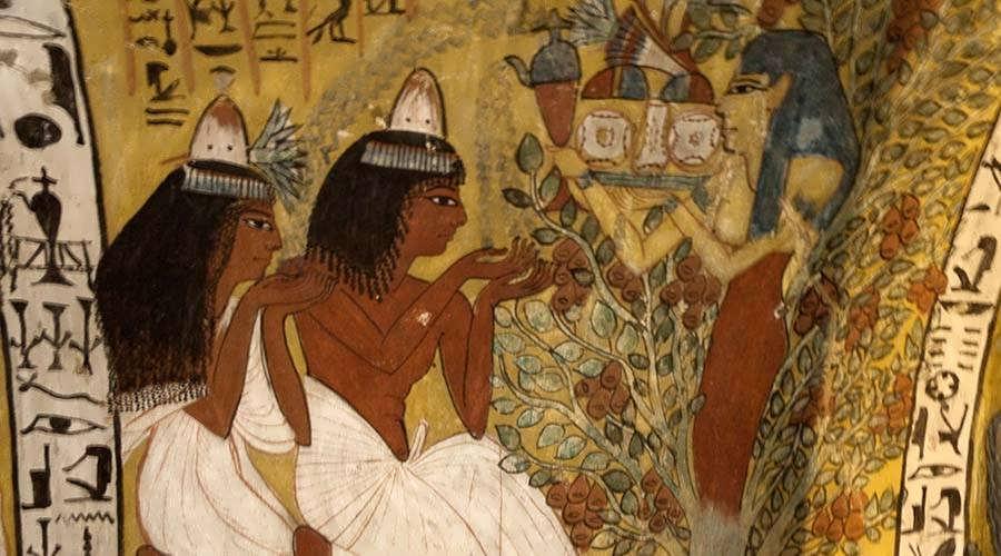 Sennefer tomb Luxor
