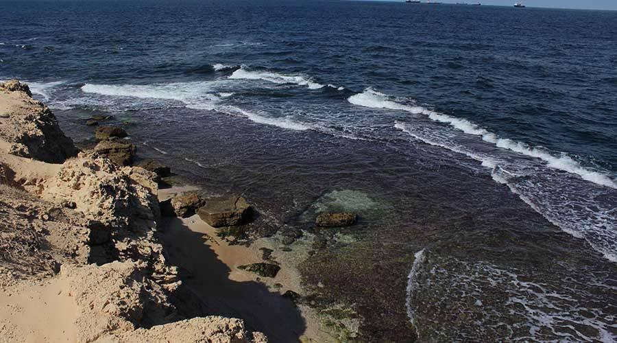 Nelsons Island Alexandria