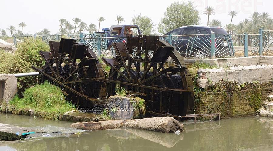 Fayoum Waterwheels