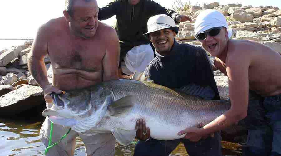 Fishing in Lake Nasser Egypt