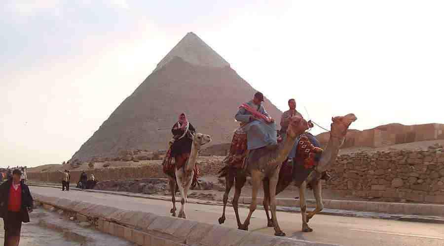 Giza Camel Ride