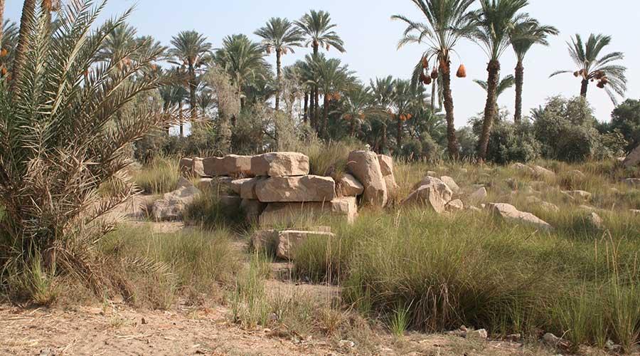 Biahmu Fayoum
