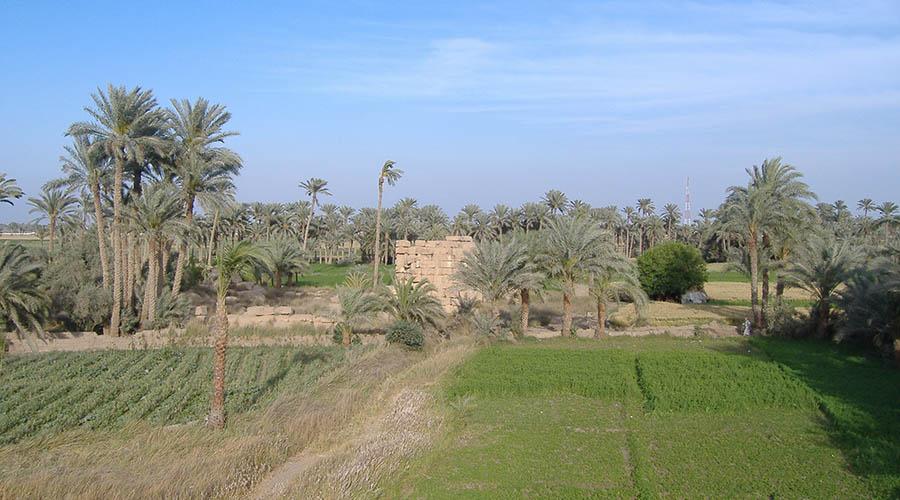 Biahmu Fayoum Egypt