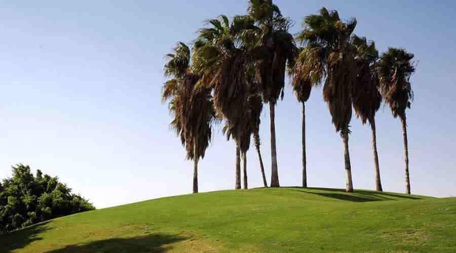 Cairo Golf Egypt