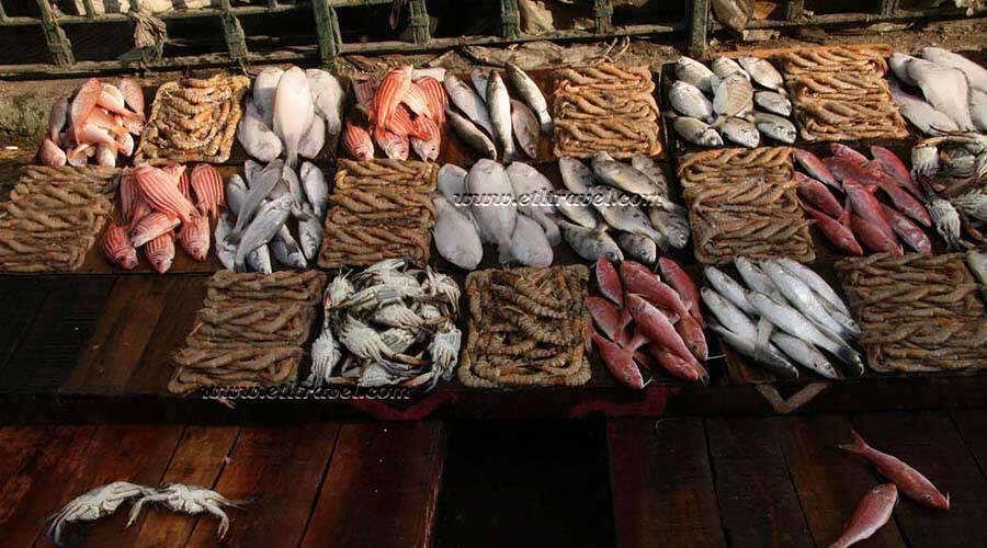 Anfushi Fish Market Alexandria
