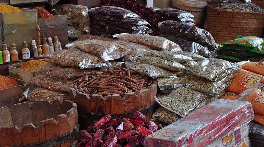 Aswan Activities
