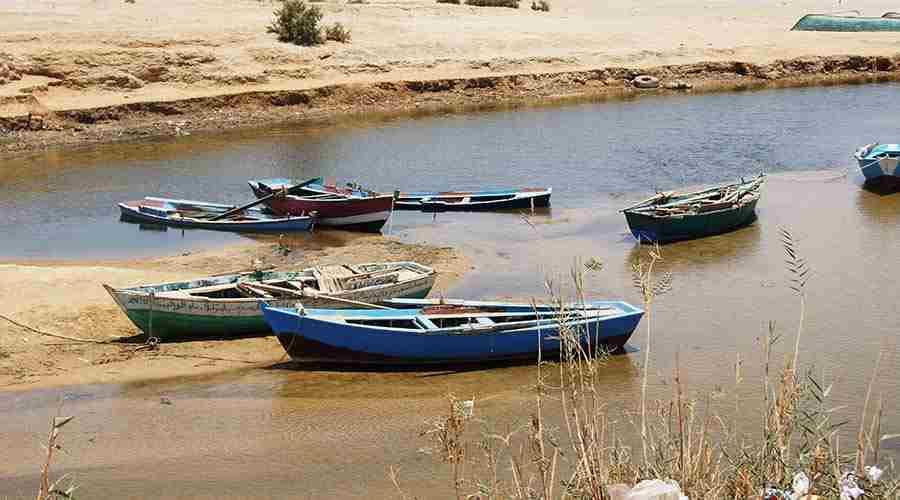Camel Trekking Wadi El Rayan