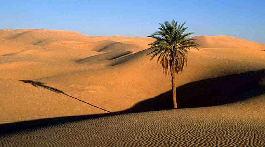 Egypt Desert Safari tour Cairo Bahariya