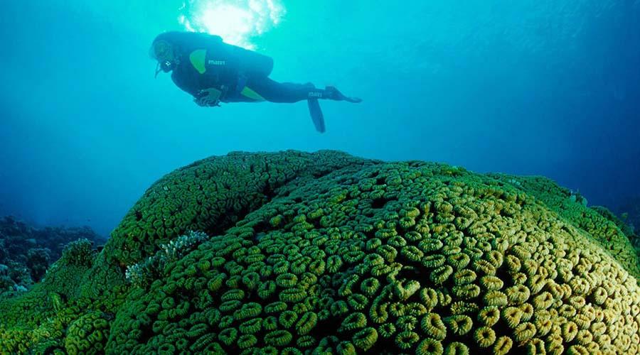 Seven Pinnacles Islands Dahab