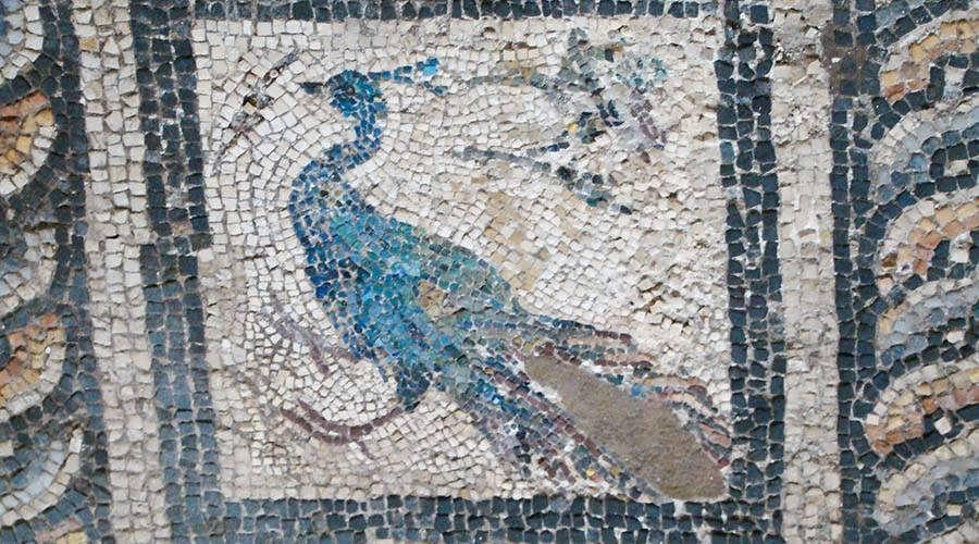 Villa of the Birds Alexandria