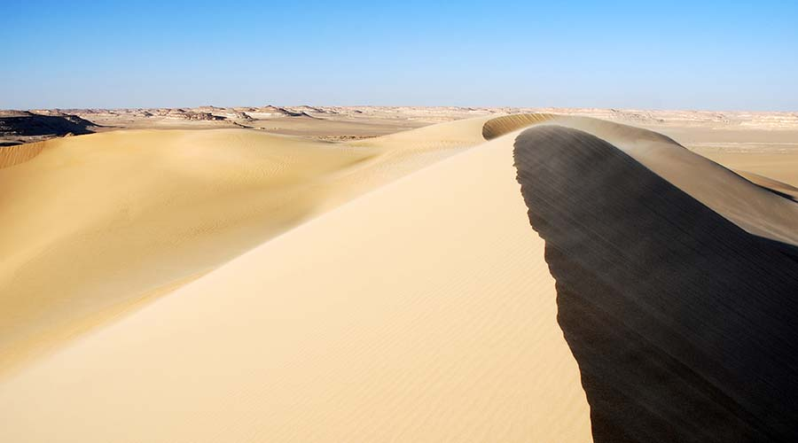 Great Sand Sea Safari