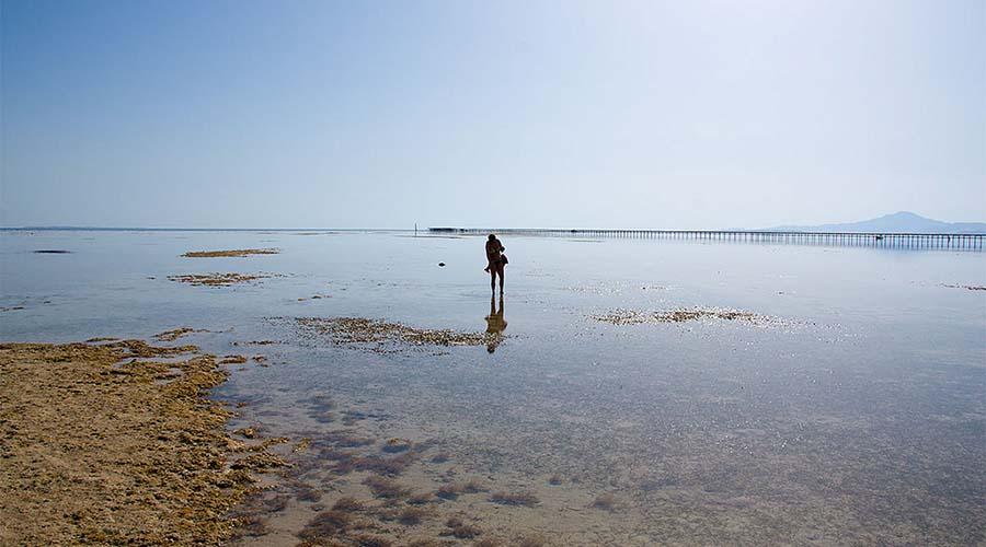 Nabq National Park Sharm