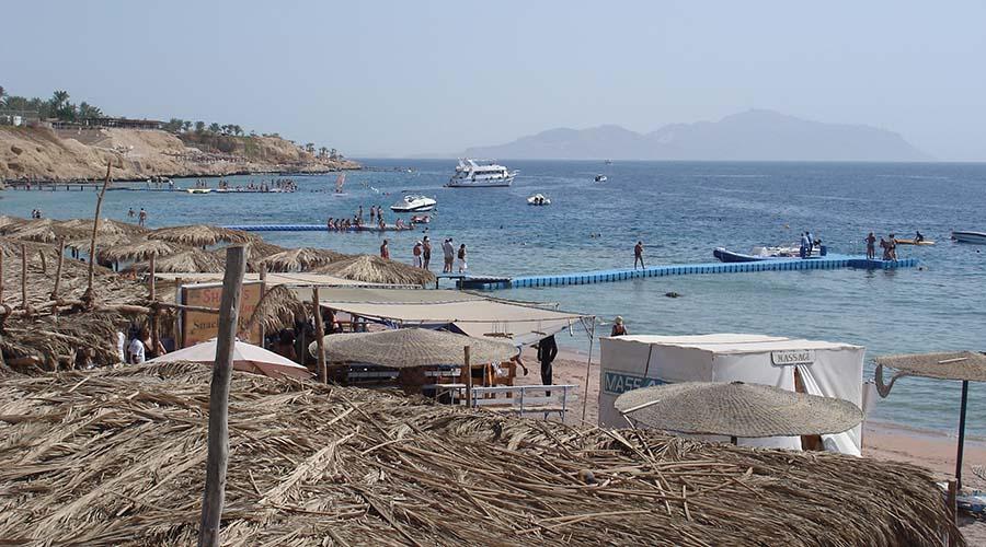 Sharks Bay Sharm