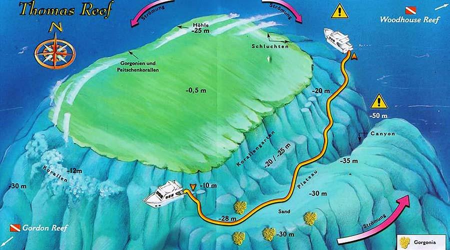 Thomas Reef Sharm Egypt