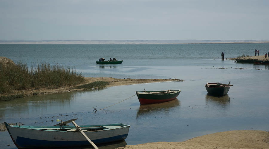 Qarun Lake Fayoum Egypt